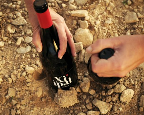 Vinos Xiipaal 1 34ZREP9158